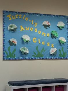 Coffee filter turtle bulletin board