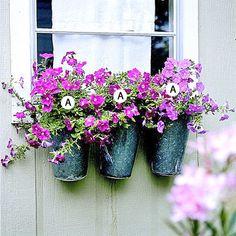 wave petunias in galvanized buckets, mimicking a window box.