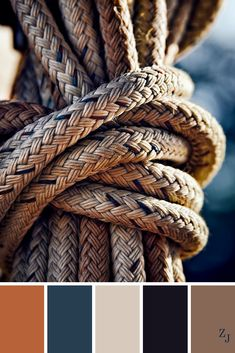 ZJ Colour Palette 729 #colourpalette #colourinspiration