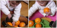 Sorting activity for toddlers and babies- transferring oranges from a pot into a sectioned tray