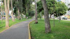Av. San Borja Norte. Sendero peatonal.