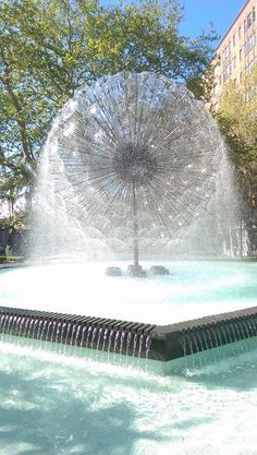 Fountain - dandelion