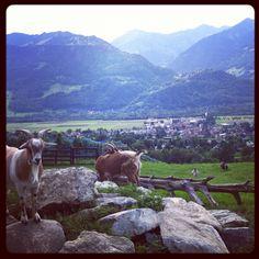 Heidi's Village, Maienfeld, Switzerland