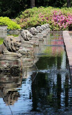Lion Statues, Norfolk Botanical Gardens, photo by Carol Hatfield