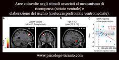 http://www.psicologo-taranto.com/la-dipendenza-gap-gioco-dazzardo-patologico-correlata-delle-alterazioni-cerebrali La dipendenza da gioco d'azzardo patologico (GAP) sembra essere correlata a delle alterazioni cerebrali in aree che gestiscono l'elasticità cognitiva. E' questo quanto si afferma un nuovo studio pubblicato il 4 Aprile 2017 sulla rivista Translation Psychiatry, condotto presso l'Università di Kyoto dal team del Dottor Hidehiko Takahashi, ricercatore dell'Istituto Nazionale di…