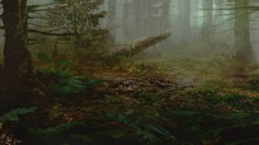 The Vanishing of Ethan Carter moodshot
