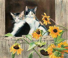 kittens and sunflowers