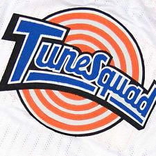 BILL MURRAY TUNE SQUAD SPACE JAM MOVIE BASKETBALL JERSEY SEWN  NEW ANY SIZE