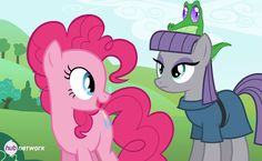 Pinkie Pie has a sister ... Maud Pie. Gummy seems to like her.