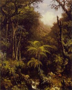 Martin Johnson Heade Brazilian Forest painting is shipped worldwide,including stretched canvas and framed art.This Martin Johnson Heade Brazilian Forest painting is available at custom size. Kenzo, Martin Johnson Heade, Forest Art, Forest Painting, Rainforest Animals, Hudson River School, Henri Rousseau, Thing 1, All Art