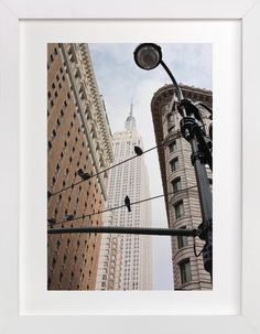 Birds of New York by Hannah Graham at minted.com
