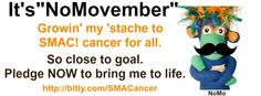 DO this...or I'll grow a beard too. Pledge NOW.  #NoMovember #SMACancer