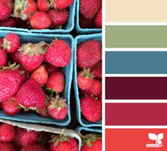 Produced Hues - http://design-seeds.com/index.php/home/entry/produced-hues12