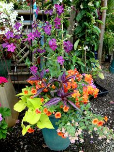 """flower container one color 