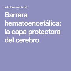 Barrera hematoencefálica: la capa protectora del cerebro