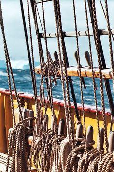 the rigging of the ship Old Sailing Ships, Ocean Sailing, Classic Sailing, Sail Away, Set Sail, Wooden Boats, Tall Ships, Model Ships, Water Crafts