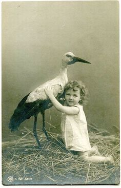 Vintage photo: child with stork