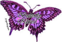Butterfly Kisses Purple Glitter Butterfly Graphic MySpace Glitter Graphic Comment