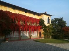 L'autunno a Palazzo Monti della Corte