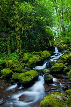 - Awakening Stream - Another one from the Columbia River Gorge, Oregon. Hope you like it :)
