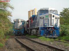 Trens em CORDEIRÓPOLIS/SP