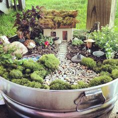 Fairy Garden for Sarah and Emma. (Like the 'moss' on the cottage roof and all the little gardening implements- so sweet!)