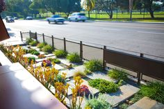 Patio & Outdoor: Awesome Native And Drought Tolerant Landscaping ...