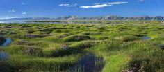 Il Viaggiatore Magazine - Lago Conag - Qinghai, Cina