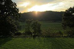 Napa Valley Sunset   sunsets
