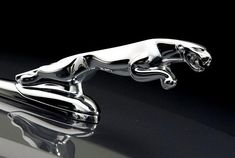 Jaguar Car Logo, Jaguar Type, Luxury Car Logos, Luxury Cars, Jaguar Hood Ornament, Mercedes Benz Wallpaper, Futuristic Cars, Hood Ornaments, Exotic Cars