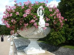 Large classic Urns filled with geraniums...