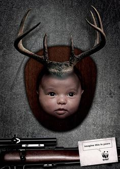 WWF :: Pubblicità riflessive