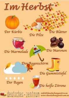 Herbst  Deutsch Wortschatz Grammatik German DAF Vocabulario Alemán
