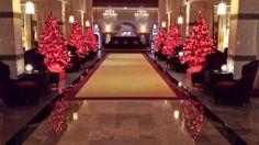 La Mamounia se pare de ses couleurs d'hiver et d'une ambiance de fête avec ses somptueuses décorations de Noël.....  La Mamounia is decked out in the colours of winter and a festive atmosphere with its gorgeous Christmas decorations....