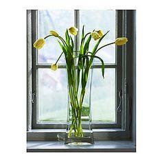 "REKTANGEL Vase - IKEA 17"" tall $15.99 until 3/3"