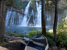 Camping in the Golden State is like dining at an all-you-can-eat buffet. From the ocean to the mountains to the desert, this menu will help you plan your trip.