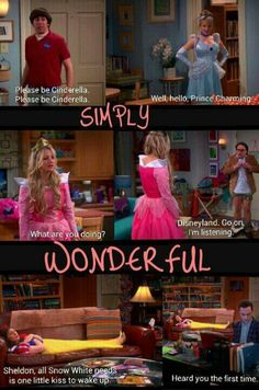 Disney Princesses. The Big Bang Theory.