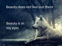 wolf, animal, and white image Truth Quotes, New Quotes, Motivational Quotes, Life Quotes, Inspirational Quotes, Funny Quotes, Lone Wolf Quotes, Wolf Pictures, She Wolf