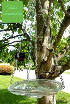 DIY birdfeeder from an old Pyrex lid and chain.