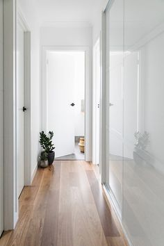 Moncrieff residence hallway - Studio Black.  NSW spotted gum timber flooring and matte black fixtures.