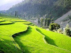 Vallée de Leepa, Azad Cachemire, Pakistan - http://www.photomonde.fr/vallee-de-leepa-azad-cachemire-pakistan/