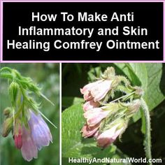 Anti inflammatory and skin healing comfrey ointment