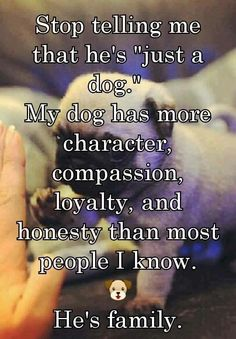 "Stop telling me that he's just a ""dog""  My dog has more character, compassion, loyalty, and honesty than most people I know."