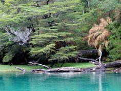"""Parque nacional """"Los Alerces"""""""