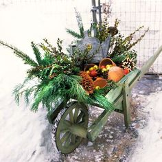 A fun and festive wheelbarrow filled with winter greens, pinecones & various other natural elements. This would be perfect near my front door!