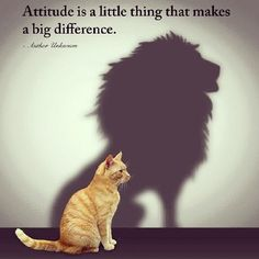 Attitude is a little thing that makes a big difference. #Motivation #Fitspiration #Fitness