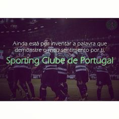 Tudo dito! #Sporting #SportingClubePortugal #sportingfans Online Surveys For Money, Make Money Online, Ouat, Once Upon A Time, You Make Me Happy, Pll, Teen Wolf, Wolf Girl, Pretty Little Liars