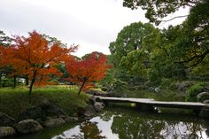 It is autumn leaves of the Kiyosumi garden in Koto-Ku, Tokyo. The number of trees that can see the autumn leaves is small, but it is a quiet garden with a lot of water. Many birds are resting wings in the pond, from any angle It is a garden where you can see the pond. 東京都江東区にある清澄庭園の紅葉です。 紅葉を見れる樹の数は少ないですが、水を多用した静かな庭園です。池には数多くの鳥が羽を休めており、どの角度からでも 池を望むことができる庭園です。 #Japan,#Landscape,#Green,#autumnleaves