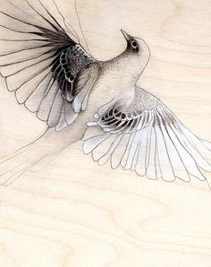 bird in flight small art print by TheHauntedHollowTree on Etsy, $15.00