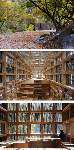 Books and Nature. See this library in China!